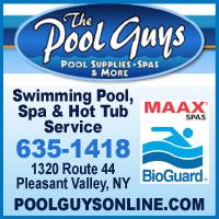 The Pool Guys Pools & Spas
