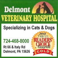Delmont Veterinary Hospital