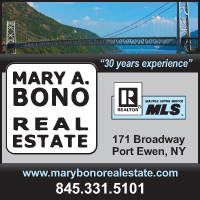 Mary Bono Real Estate