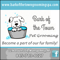 Dog & Cat Grooming in Walden NY-Bark of the Town Pet Grooming