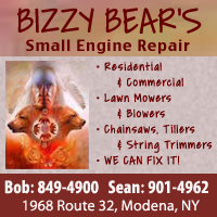Bizzy Bear's Small Engine Repair