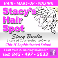 Stacy's Hair Spot
