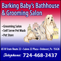 Barking Baby's Bathhouse & Grooming Salon