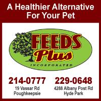 Feeds Plus