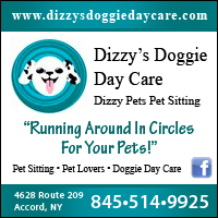 Dizzy Doggie Day Care & Dizzy Pets Pet Sitting