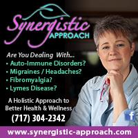 Synergistic Approach, LLC