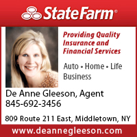 De Anne Gleeson State Farm Insurance